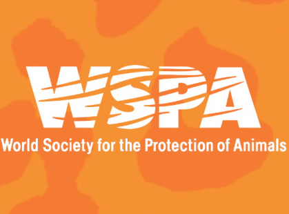 gallery/images-wspa